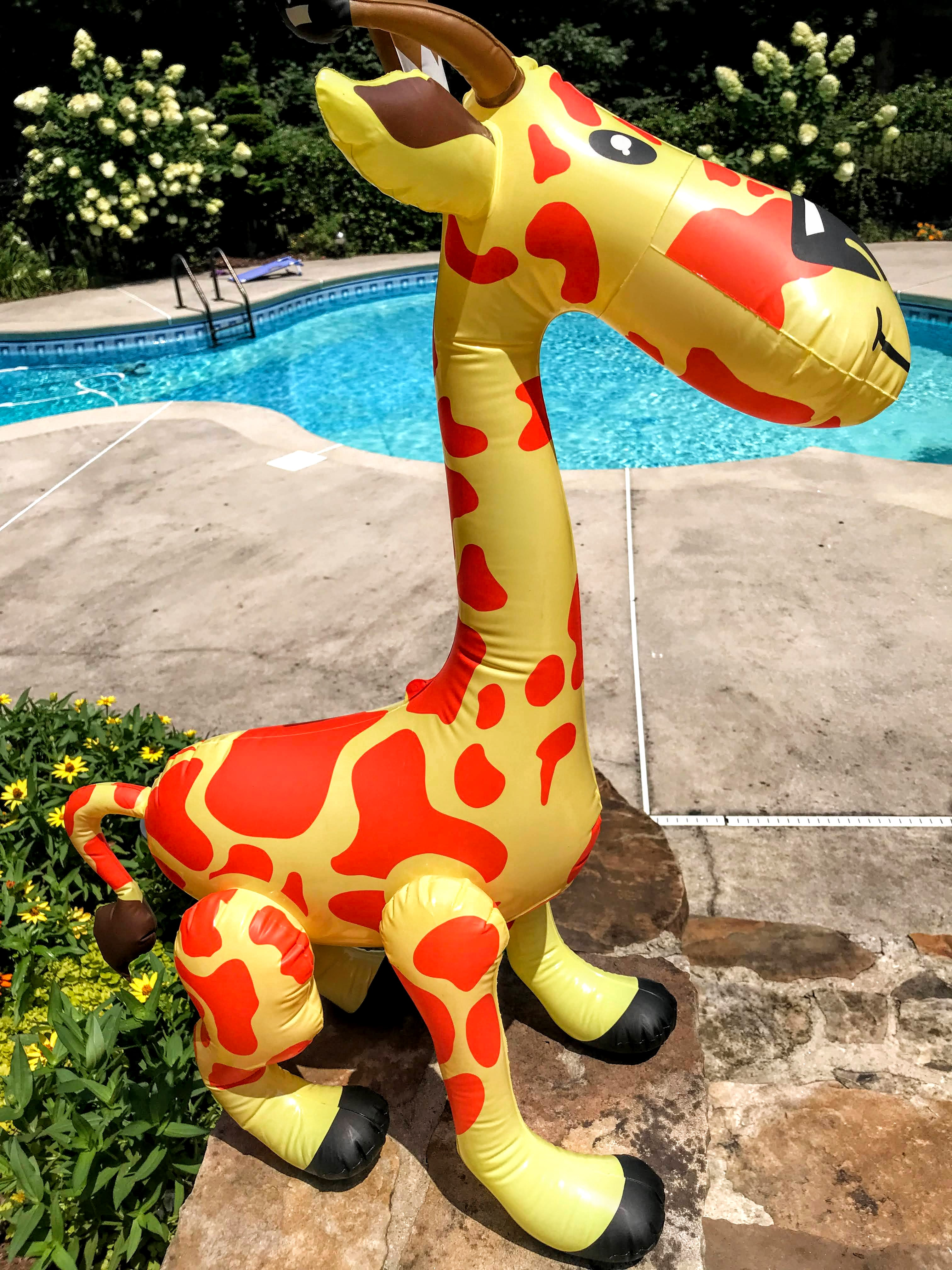 jungle themed pool party decorations
