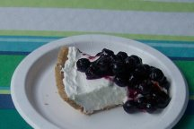 blueberry dessert recipes