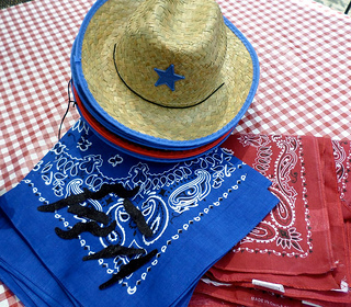western party ideas