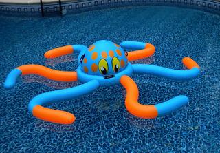 pool float toys