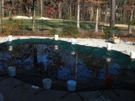 inground pool cover
