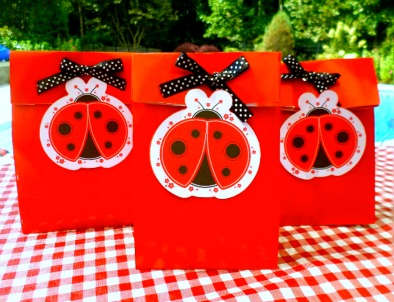 Ladybug party ideas for decorations crafts party favors for Bag decoration games