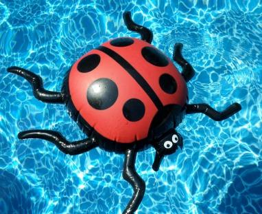 ladybug party supplies