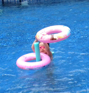 swimming pool noodles