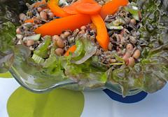 cold salad recipes