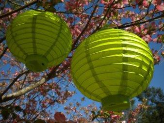 paper lantern lights