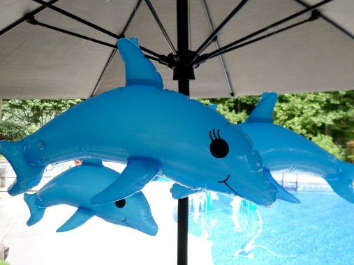 dolphin party decorations